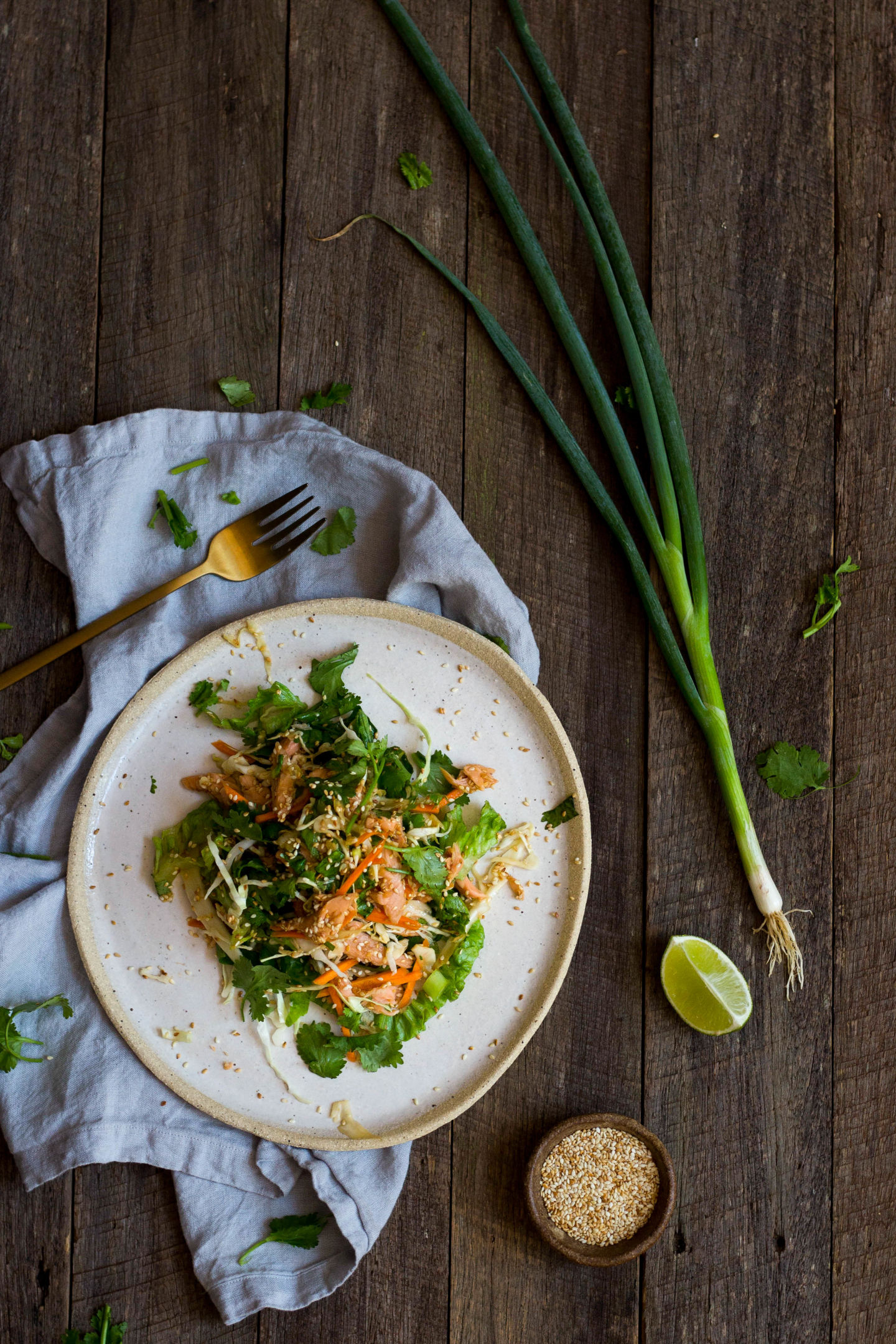 Smoked Trout and Asian Slaw Salad Gluten Free -3945